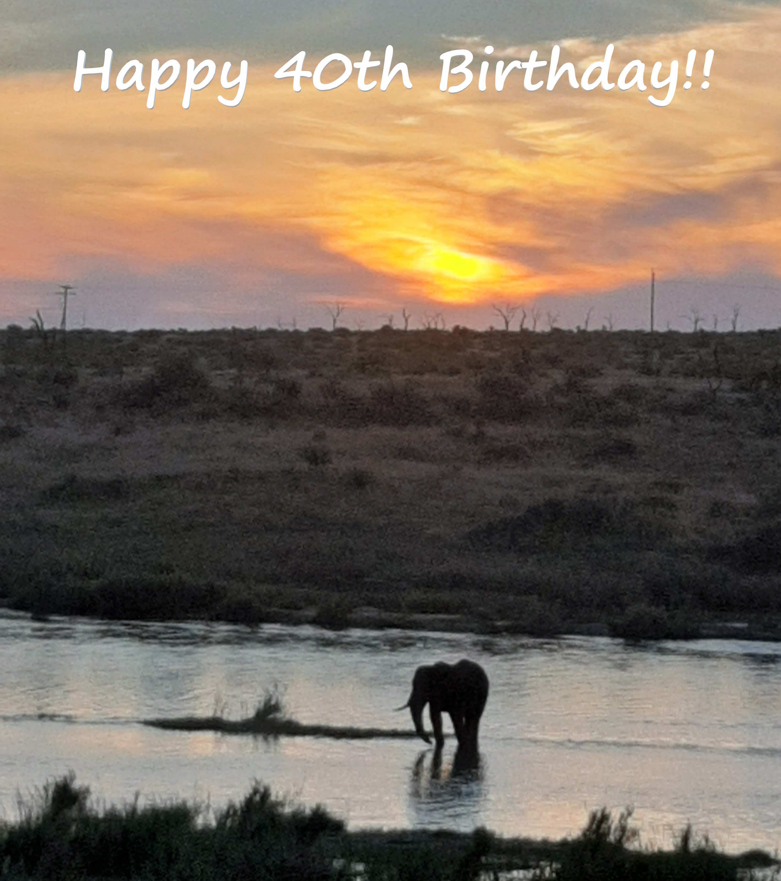 Happy-Birthday-Sunset-Elephant